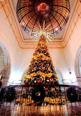 Christmas Lights For Sale Melbourne