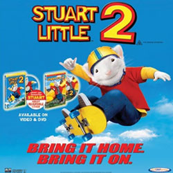 Stuart Little In Sydney Female Com Au