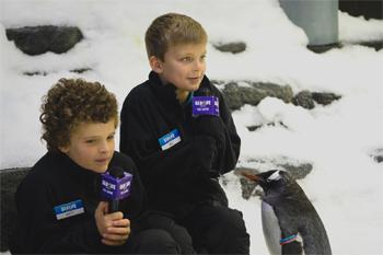 Will and Matt Bond SEA LIFE Sydney Aquarium's Junior Penguin Reporters Interview